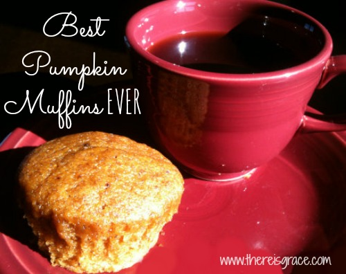 Hands-Down, the Best Pumpkin Muffins EVER | thereisgrace.com