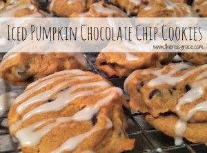 pumpkin chocoloate chip cookies